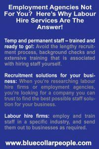 Employment Agencies Not For You Here's Why Labour Hire Services Are The Answer 682x1024