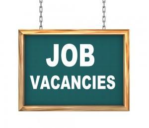 Job Vacancy 300x258